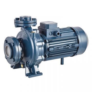 TOKYO KEIKI SQP21-21-11-1DC-18 Double Vane Pump